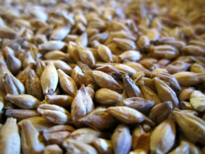 4 Sustainable Uses for Brewer's Spent Grain